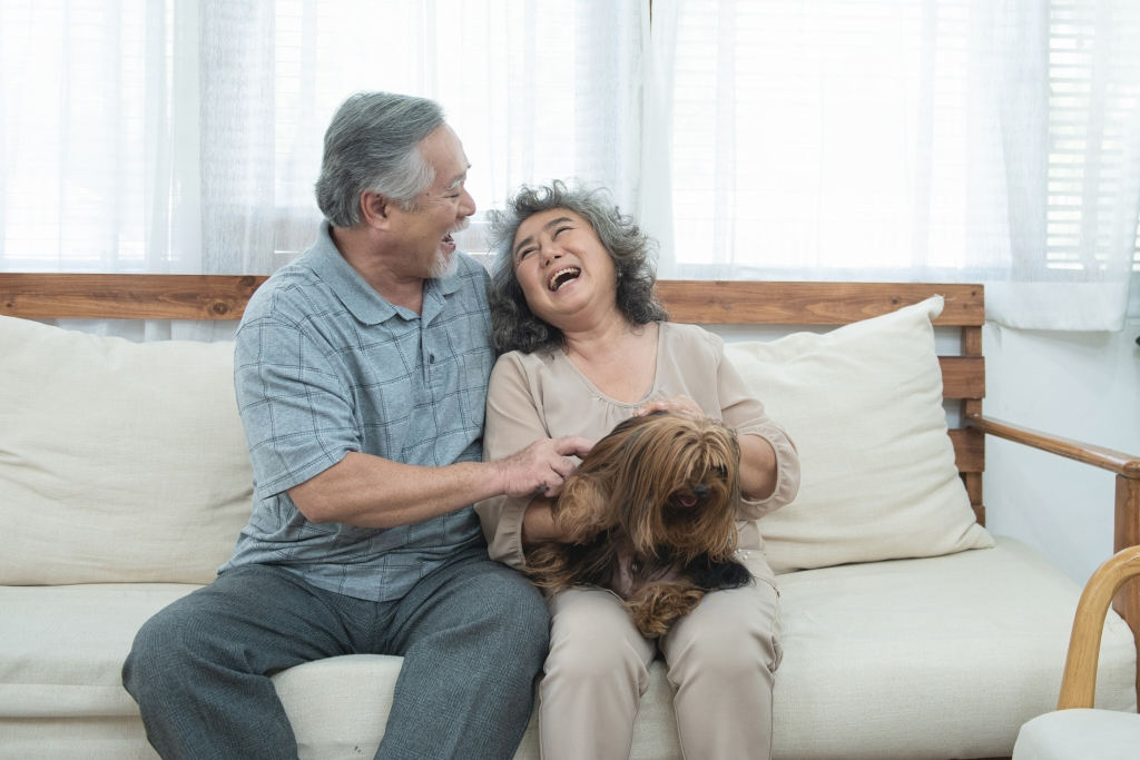 大切な家族「ペットと暮らす家」